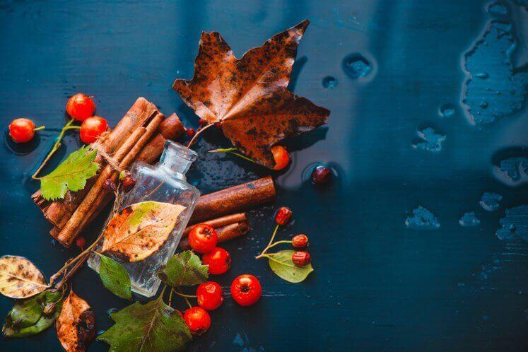 Zapachy na jesień